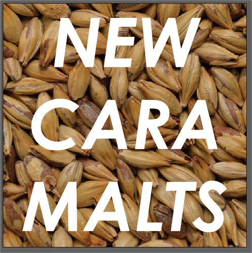 Castle Malting® announces the launch of NEW caramel malts!