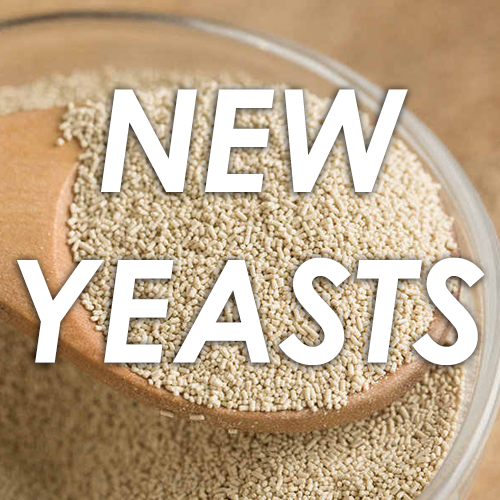 NEW YEASTS ALREADY AVAILABLE AT CASTLE MALTING