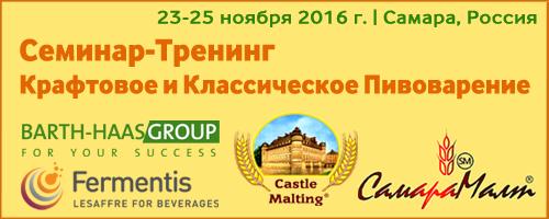 Seminar_Samara_2016b.png
