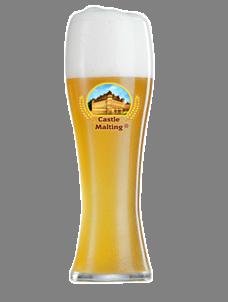 Wheat Beer (Hoegaarden-style)