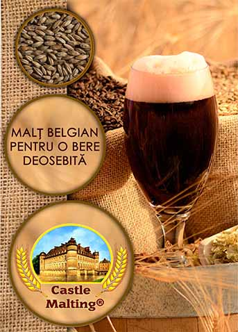 Broșură Castle Malting în română (44 pagini)