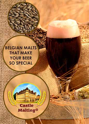 Castle Malting Brochure in English (44 pages)