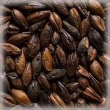 CHÂTEAU CHOCOLAT (巧克力麦芽)