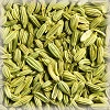 FENNEL SWEET (WHOLE) ORGANIC